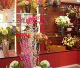 开花店如何赚钱?