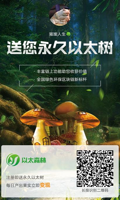 以太森林骗局:以太森林是真的吗?.jpg