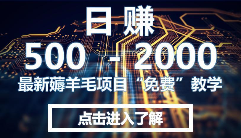 【安全】最新薅羊毛项目 暴力日赚2000+方法!!!! 第1张